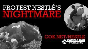 Protest Nestle's Nightmare