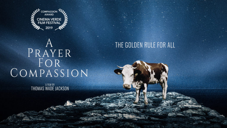 a-prayer-for-compassion