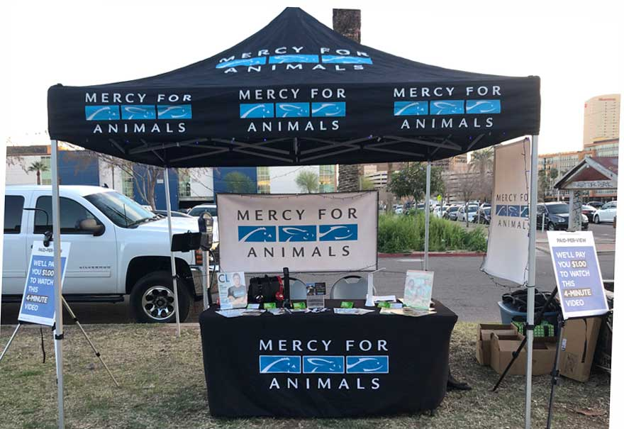 Mercy for Animals PPV at First Friday Art Walk