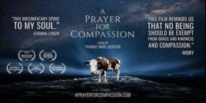 A Prayer for Compassion